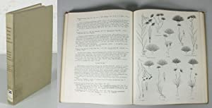 Vascular Plants of the Pacific Northwest, Part 5: Compositae.: Cronquist, Arthur: