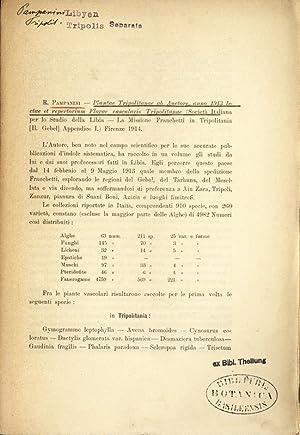 Plantae Tripolitanae ab Auctore, anno 1913 lectae: PAMPANINI, R.: