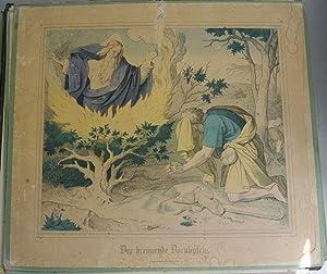 DER BRENNENDE DORNBUSCH. Kolorierte Bildtafel Nr. 11, aus: Bilder-Bibel. Vierzig kolorierte ...