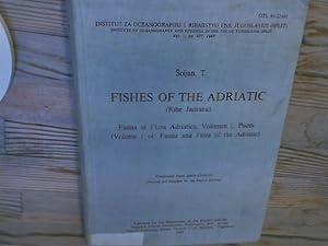 Fishes of the Adriatic (Ribe Jadrana). Fauna: Soljan, T.: