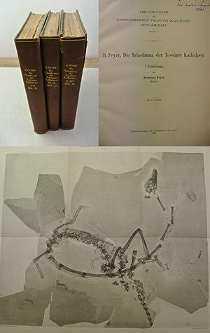 Die Triasfauna der Tessiner Kalkalpen. Beiträge I-XIV: Peyer, Bernhard [Hrsg.],