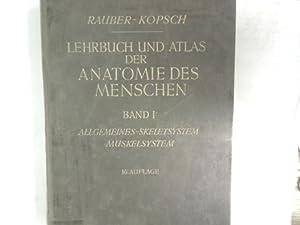 Lehrbuch und Atlas der Anatomie des Menschen: Rauber, August und