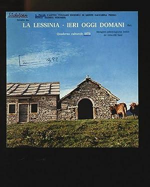Estratto da: La Lessinia, ieri, oggi, domani.: Piccoli, Giuliano,