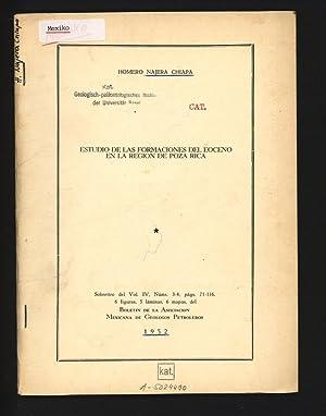 Estudio de las formaciones del eoceno en: Najera Chiapa, Homero,