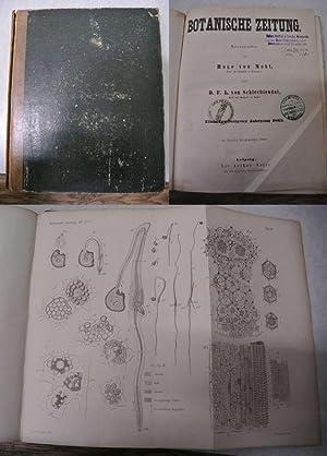 Zur Histologie der Coniferen, in: BOTANISCHE ZEITUNG.: Mohl, Hugo von