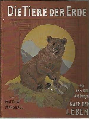 Die Tiere der Erde : eine volkstu mliche Uebersicht u ber die Naturgeschichte der Tiere (3 Volumes)...