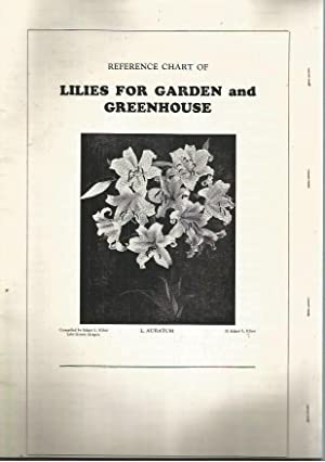 Reference Chart of Lilies for Garden and Greenhouse: Kline, Edgar L.