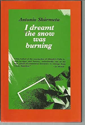 I Dreamt the Snow Was Burning