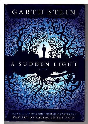 A SUDDEN LIGHT.: Stein, Garth.