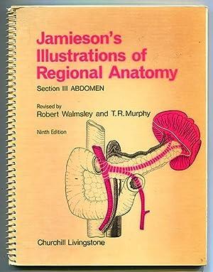 Jamieson's Illustrations of Regional Anatomy Section III: Jamieson, E. B.