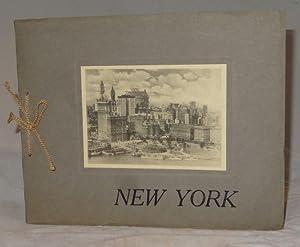 NEW YORK (25 Albertype Photo Images)