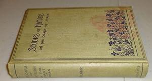 STUDIES OF THE NATURE ON THE COAST OF ARRAN: George Milner