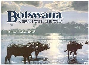 Botswana: A Brush with the Wild: Augustinus, Paul