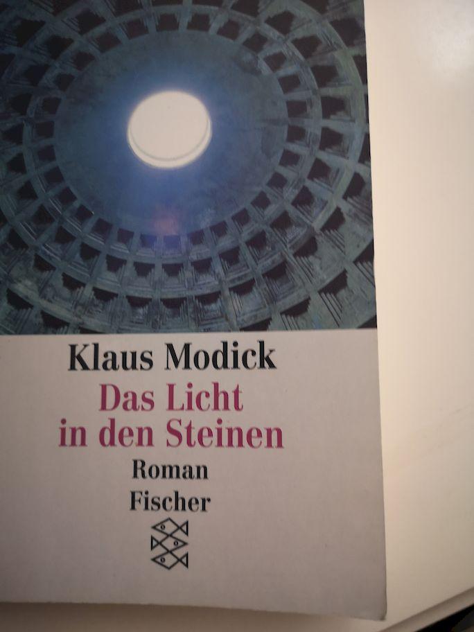 Das Licht in den Steinen : Roman. Fischer ; 11760