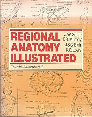 Regional Anatomy Illustrated: J.W. Smith; T.R.