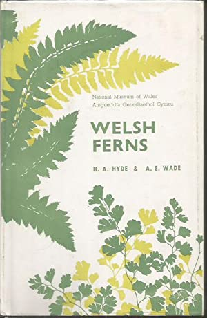 Welsh Ferns . Fourth edition, etc. With illustrations