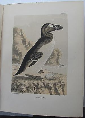 St Kilda Past & Present;: SETON, George: