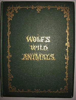 The Life and Habits of Wild Animals: Elliot, Daniel Giraud