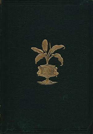 Beautiful Leaved Plants: Being A Description of: E. J. Lowe