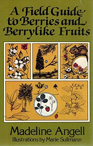 A Field Guide to Berries and Berrylike Fruits: Angell, Madeline