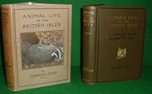 ANIMAL LIFE OF THE BRITISH ISLES A POCKET GUIDE TO THE MAMMALS, REPTILES AND BATRACHIANS OF WAYSI...