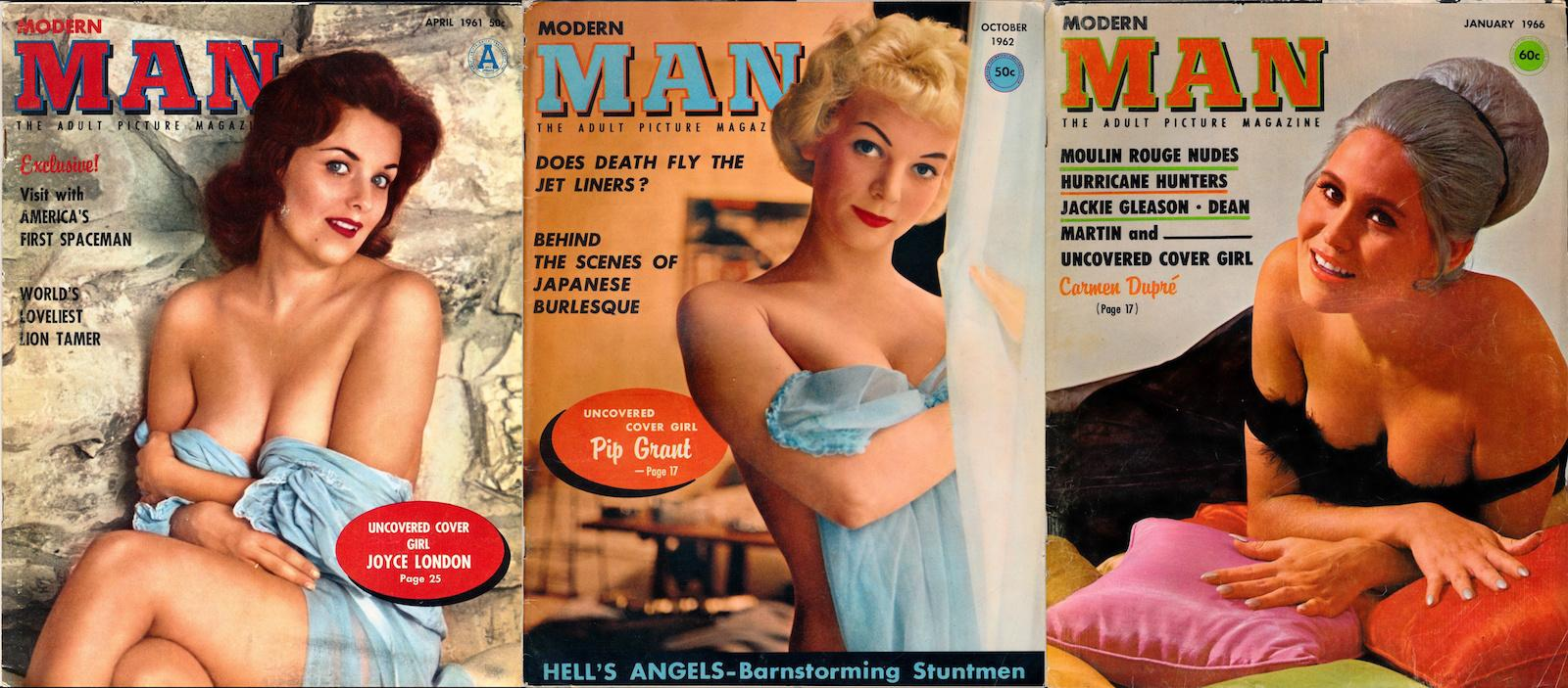 Agree with Vintage adult magazines your