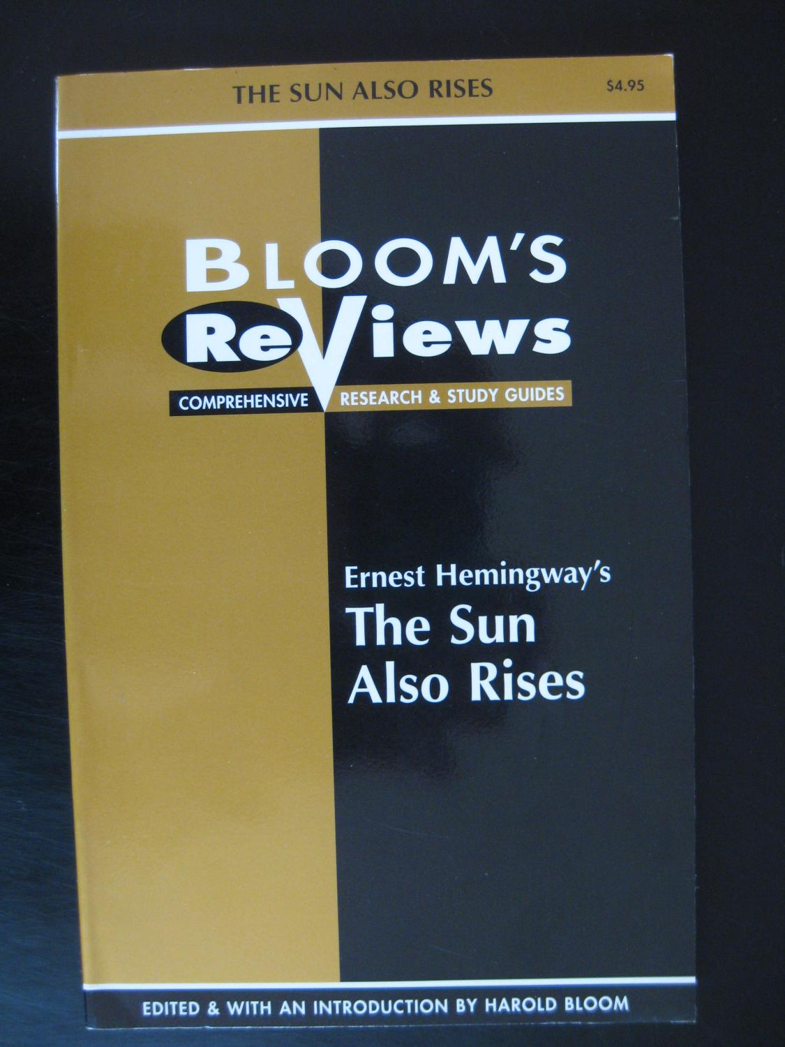 the sun also rises study guide Category: english/ paper: the sun also rises the remarkable thing about the book was its liberal use of dialogue and how hemingway used it to carry the reader through the book there was no plot in the book in the sense that there was no twists, intrigue, or goals for any of the characters and the dialogue was the only thing that moved the.
