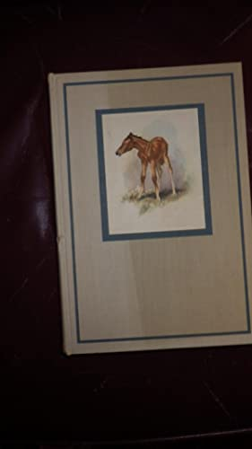Red Pony, The: John Steinbeck, illustrated