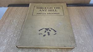 Through The Ant Hill: Amelia Brookes