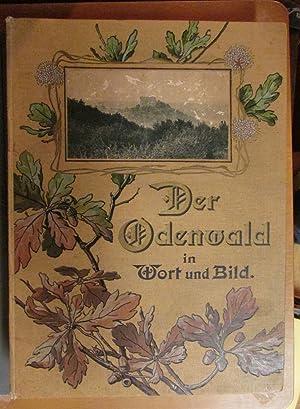 Der Odenwald in Wort und Bild: Lorentzen, Th.