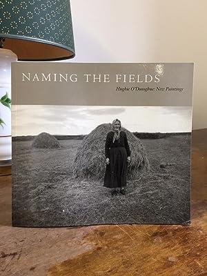 Naming the Fields: Hughie O' Donoghue : Hughie O'Donoghue