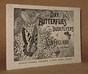 THE DAY BUTTERFLIES AND DUSKFLYERS OF NEW ENGLAND: E. Knobel