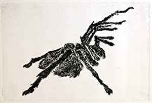 Some Arachnids: Sills, Joyce