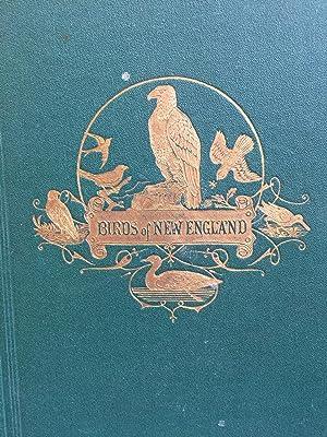 The Birds of New England: Edward A. Samuels