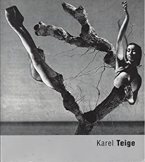 Karel TEIGE : The Reality of Desire: Srp, Karel -