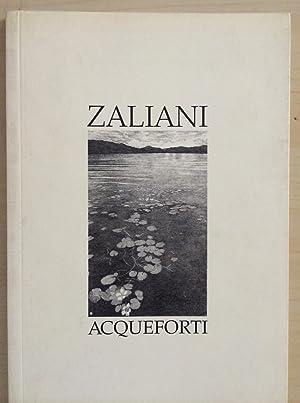 Agostino Zaliani - Acqueforti: Cavallo, Luigi