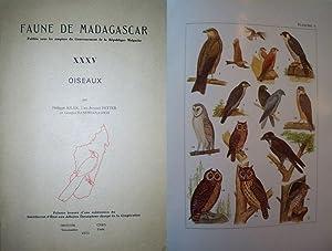 Faune de Madagascar XXXV. Oiseaux.: Ornithologie Vogelkunde -