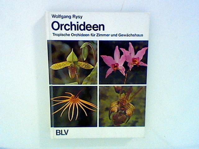 Orchideen Tropische Orchideen Fur Zimmer Und Gewachshaus Von Rysy