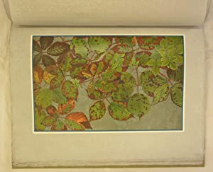 Feuilles d'automne. Préface de Philippe Godet.: Jugendstil - Robert,