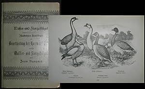Wasser- und Ziergeflügel. Illustriertes Handbuch zur Beurteilung der Racen und Schläge ...
