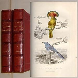 Oeuvres complètes de Buffon avec la nomenclature: Zoologie. Vögel -
