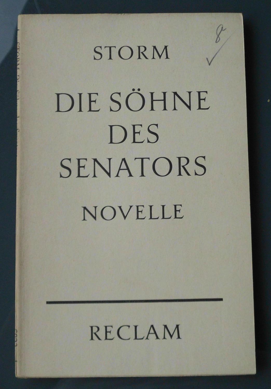Die Söhne des Senators: Novelle: Theodor Storm
