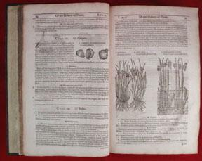 HERBALL OR GENERAL HISTORIE OF PLANTES. Gathered by John Gerarde of London Master in Chirvrgerie, ...