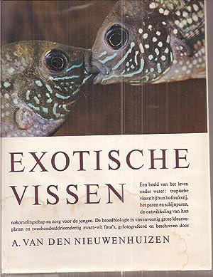 Exotische Vissen: Nieuwenhuizen,A.van den