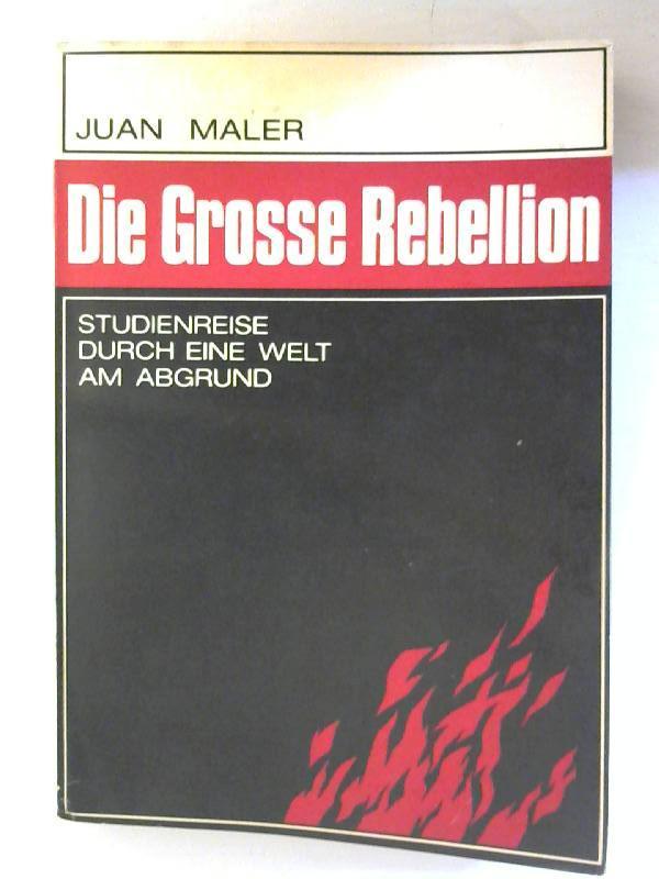 Die grosse Rebellion. Studienreise durch eine Walt: Maler, Juan: