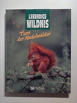 Lebendige Wildnis. Tiere der Nadelwälder.: Dienherr-Steinherr, Annegret und
