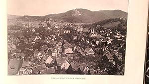 Album vom Harz. 59 Ansichten nach den schönsten Naturaufnahmen in Photographiedruck