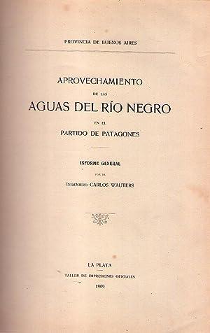APROVECHAMIENTO DE LAS AGUAS DEL RIO NEGRO EN EL PARTIDO DE PATAGONES. Informe General por El ...