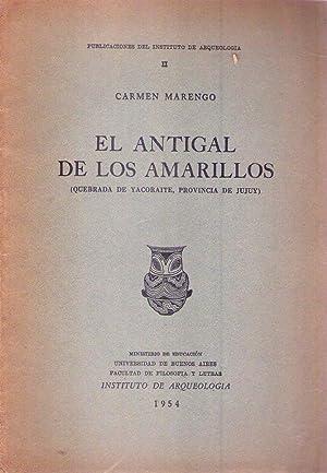 EL ANTIGAL DE LOS AMARILLOS. Quebrada de Yacoraite, provincia de Jujuy: Marengo, Carmen