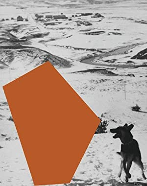 John Baldessari : a different kind of: Fuchs, Rainer [Hrsg.]